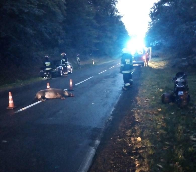 Do tego niebezpiecznego zdarzenia doszło w poniedziałek rano na drodze krajowej nr 28, w lesie pomiędzy Dybawką a Prałkowcami pod Przemyślem.- Kierujący