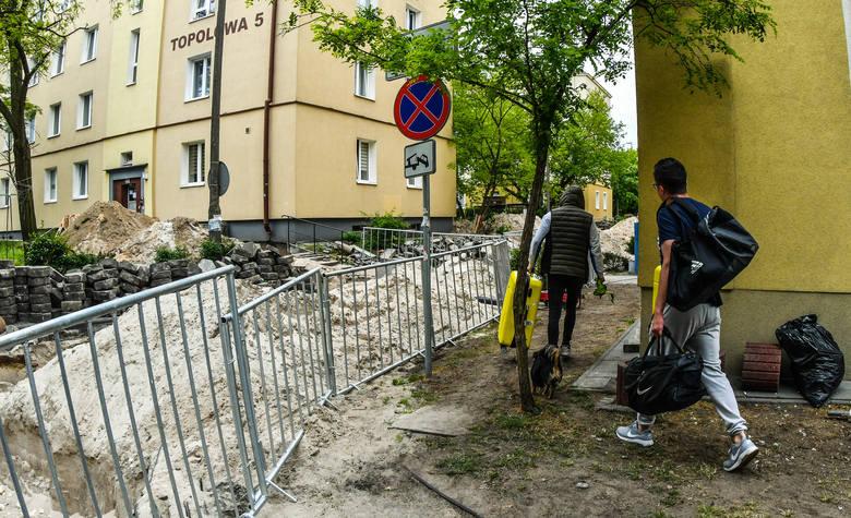Kontrowersyjne plany wycinki drzew na Osiedlu Leśnym w Bydgoszczy