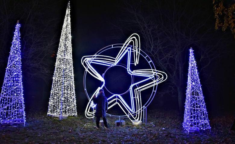 Stargard świątecznie rozświetlony. Tak wygląda miasto nocą. Zobacz zdjęcia!
