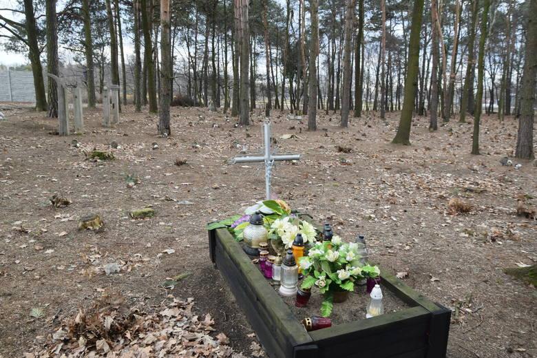 Kto niszczy dawny cmentarz pacjentów szpitala psychiatrycznego w Rybniku?