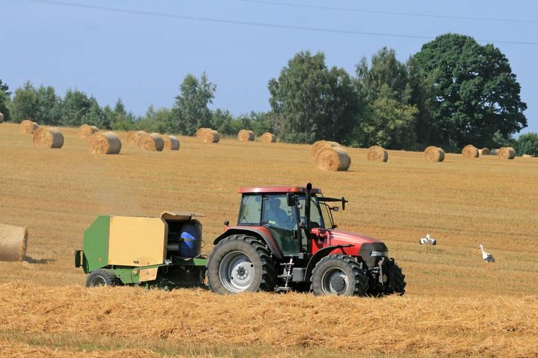 ARiMR: wyższa premia dla młodych rolników