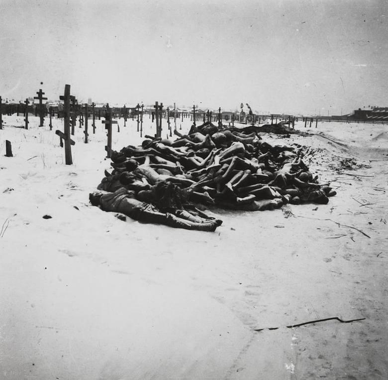 Cmentarz w Buzułuku. Ciała ofiar wielkiego głodu na Powołżu