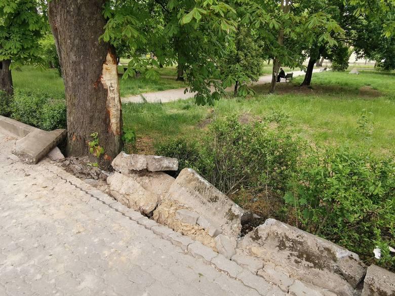 Radiowóz w Aleksandrowie Kujawskim wjechał do parku. Policjant dostał mandat