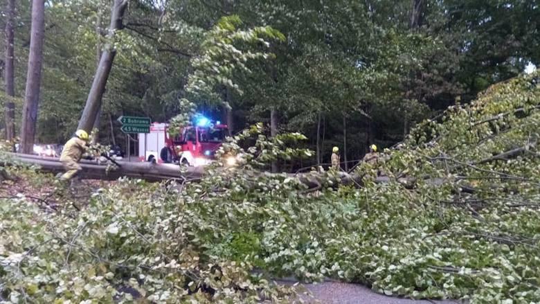 W wyniku silnych wiatrów, które nawiedziły region koszaliński strażacy musieli interweniować w wielu miejscach. Tak było m.in. w powiecie drawskim. W
