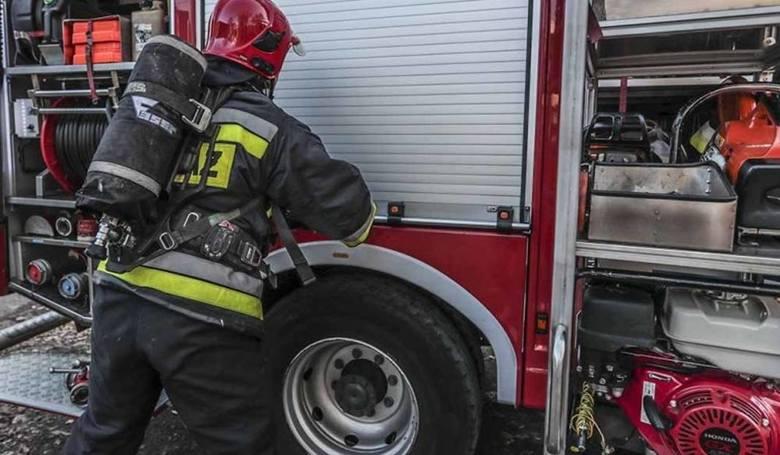 Zawodowi strażacy średnio zarobią 5560 zł.POLECAMYZarobki w wojsku 2018. Ile zarabia żołnierz zawodowy? Jakie dodatki specjalne mu przysługują?Zobacz
