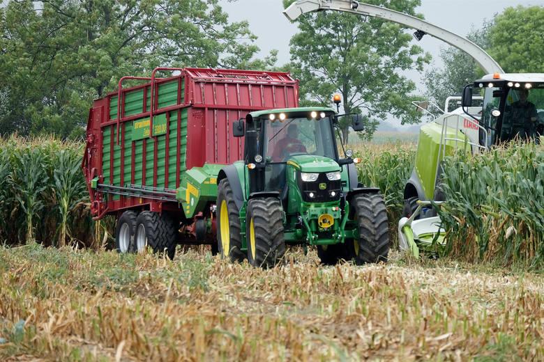 Uprawiasz kukurydzę? Musisz przyjechać do SzepietowaPodczas Podlaskiego Dnia Kukurydzy - jak zawsze - odbedzie się pokaz pracy maszyn