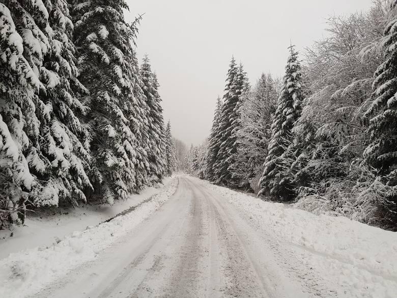 Zima w Bieszczadach. Zdjęcia udostępniła nam Ewelina Baran z Centrum Promocji Leśnictwa w Mucznem.