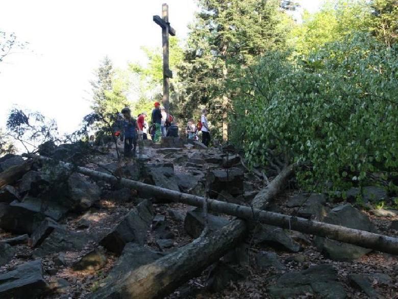Wycięte drzewa na Łysicy!  Trudno rozpoznać najwyższy świętokrzyski szczyt. To dzieło szaleńca czy ktoś się zemścił! (zdjęcia)
