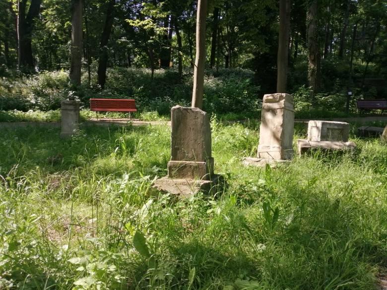 Park w Wojanowie - wyjątkowe miejsce z ciekawą historią w tle
