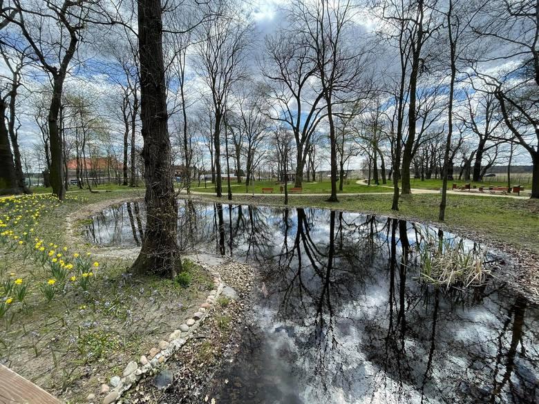 Park w Zielonej Górze Kiełpinie budzi się do życie po zimowym śnie
