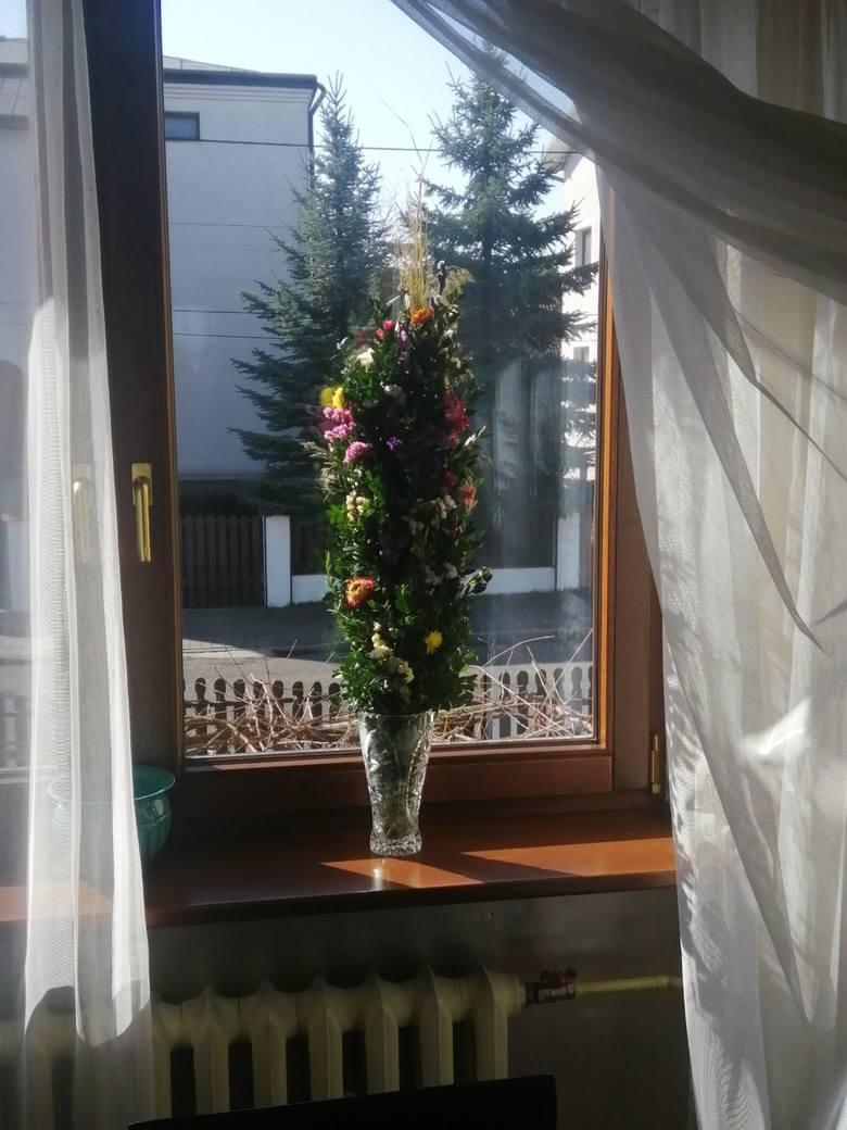 Niezwyczajna Niedziela Palmowa. Okna, ogrody, bramy ozdobione palmami wykonanymi w domach