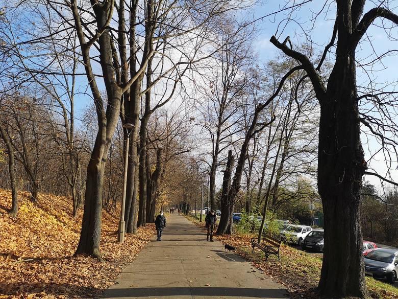 Jesienny spacer po Krakowie aleją Waszyngtona
