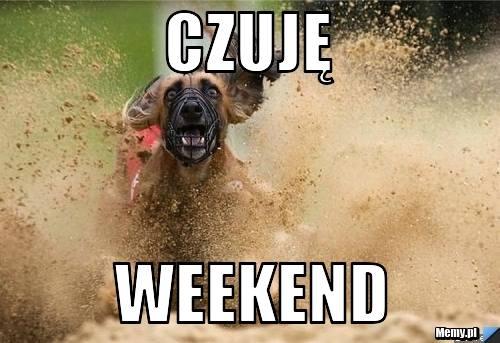 Weekend - memy. Piątek, piąteczek, piątunio rozpoczyna weekend. Zobaczcie najlepsze memy o weekendzie przygotowane przez Internautów. Utożsamiacie się