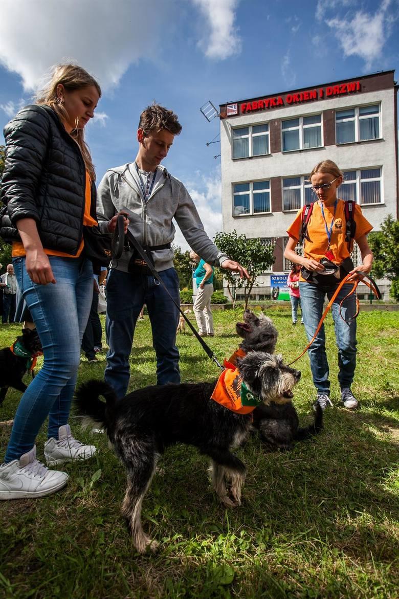 otwarcie parku kynologicznegobudżet partycypacyjny, park dla psów, skrzyżowanie powstańców wielkopolskich i  Wyszyńskiego