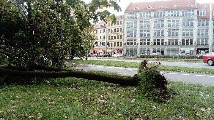 Przeszedł orkan Ksawery. 18 osób rannych, 43 tys. ludzi bez prądu [ZDJĘCIA]