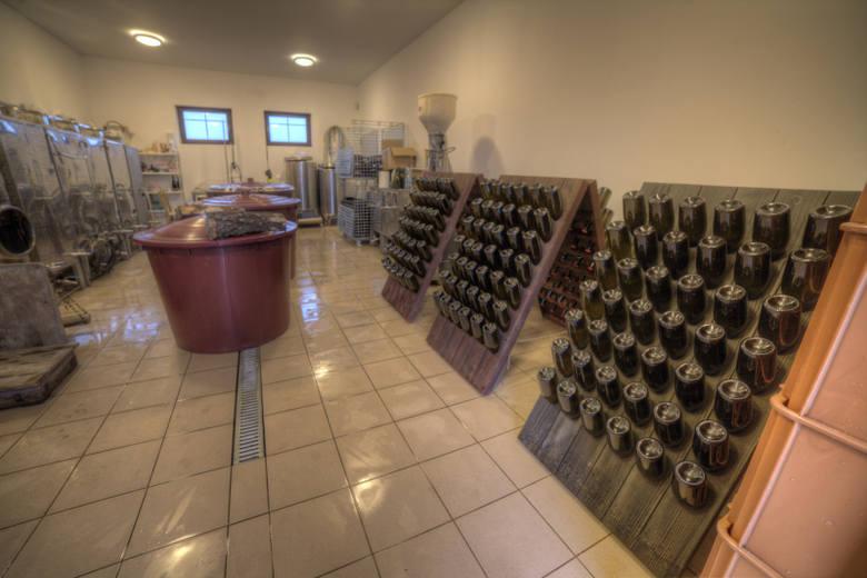"""[b]Winnica """"Pod Lubuskim Słońcem"""" w Laskach k/Przełazach została założona 12 lat temu. Na obszarze 1,2 ha rośnie 3 tysiące krzewów 11 odmian. Z jednego zbioru w ciągu roku właścicielka winnicy uzyskuje się 2,5 do 3 tys. litrów wina. Bożena Schabikowska mówi, że myli się, kto myśli, że wystarczy..."""