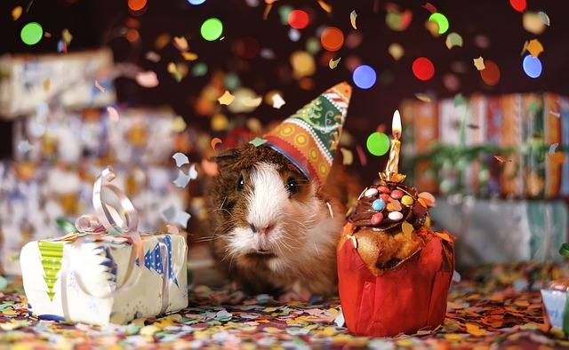 Życzenia urodzinowe: śmieszne i poważne, krótkie i wierszyki. Zobacz najpiękniejsze życzenia na urodziny!