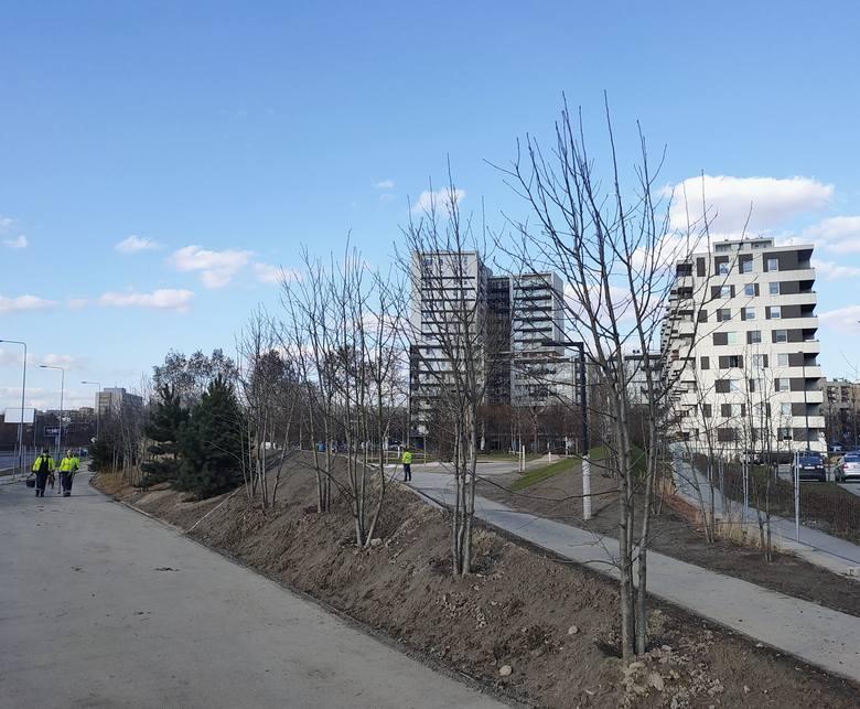 Kraków. Park w Czyżynach prawie gotowy. Mieszkańcy w końcu będą mieli trochę zieleni pod oknami [NOWE ZDJĘCIA]
