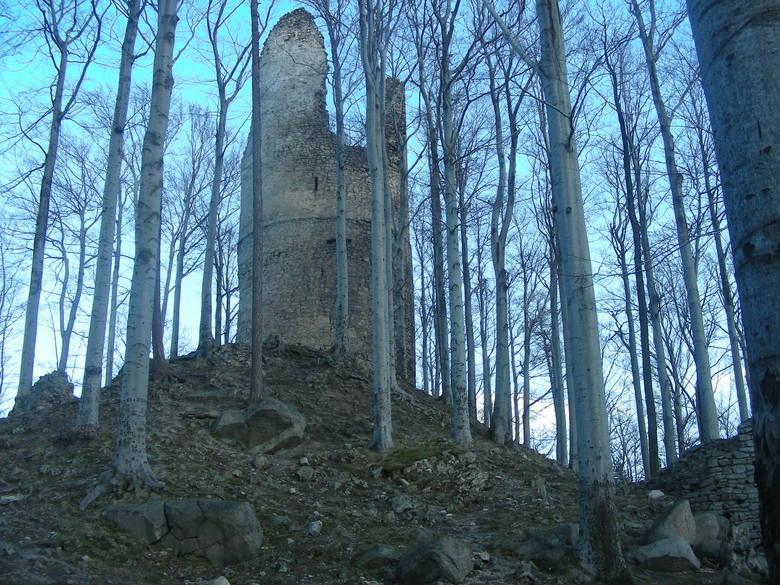 Kto pierwszy przeszuka zamek? Mobilizacja czeskich archeologów przed detektorystami z Polski
