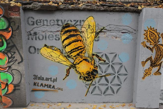 Nowy łódzki mural przeciwko GMO [ZDJĘCIA]