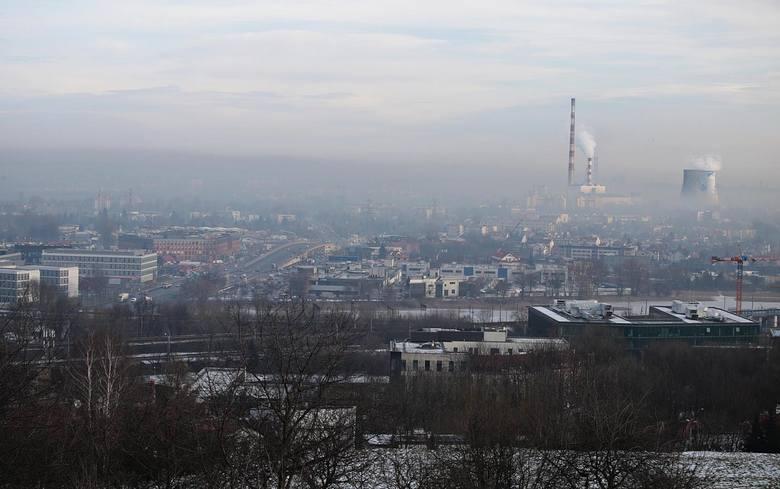 Co wiemy o smogu? Krakowski Alarm Smogowy zapytał o to Małopolan. Zobacz wyniki badania