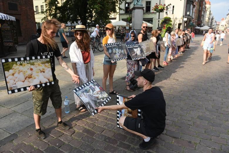 Dziś na Rynku Staromiejskim w Toruniu odbyła się pikieta w obronie praw zwierząt hodowlanych. Protest przeciwko niehumanitarnemu traktowaniu m.in. kur