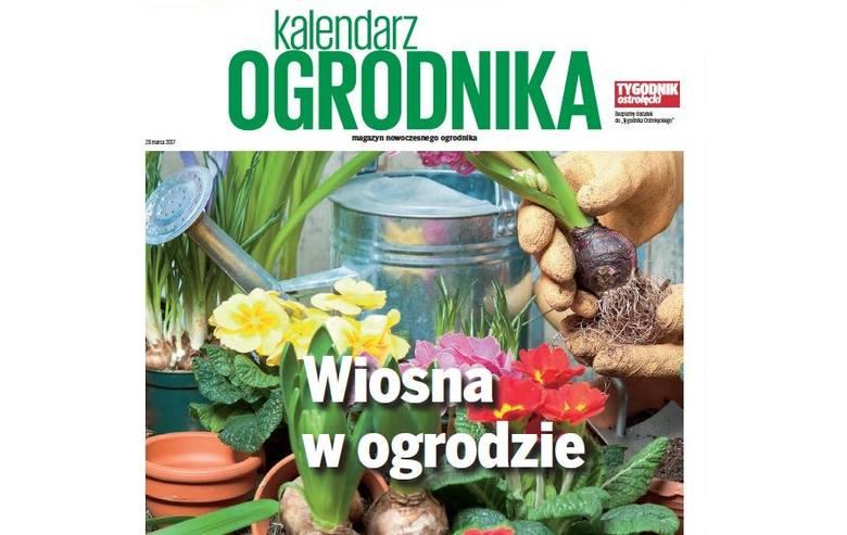 W Tygodnikach bezpłatny magazyn Kalendarz Ogrodnika