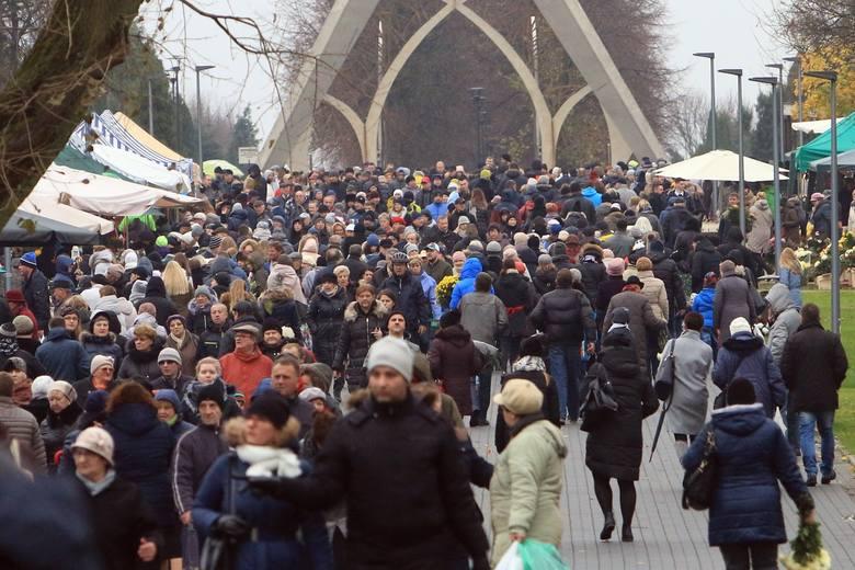 Wszystkich Świętych w Lublinie. Ile udało się zebrać podczas kwesty na Lipowej? (ZDJĘCIA, WIDEO)