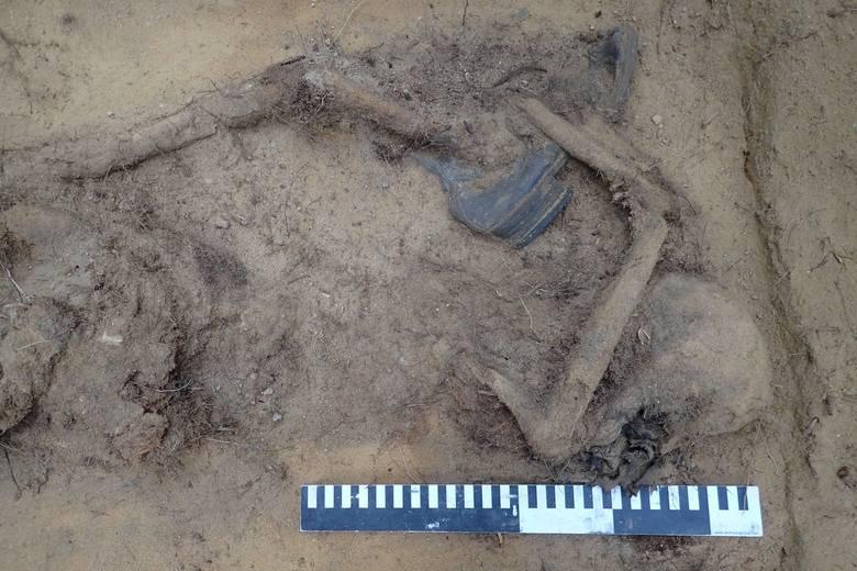 O makabrycznym odkryciu poinformowali na facebooku członkowie stowarzyszenia Pomost, które zajmuje się poszukiwaniem na ziemiach polskich szczątków niemieckich