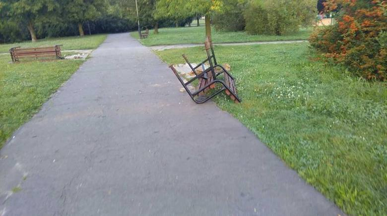 Wandale w Parku Podolskim [zdjęcia]