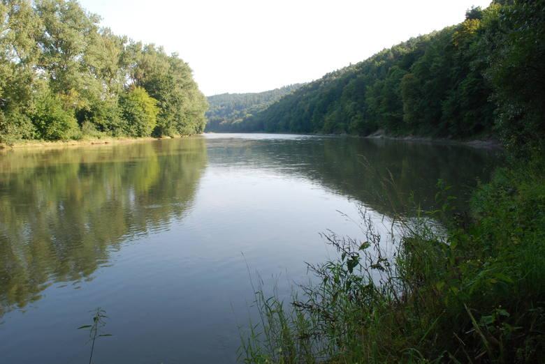 Krasiczyn, pow. przemyski, lasy porastają 62,3 proc. powierzchni gminy