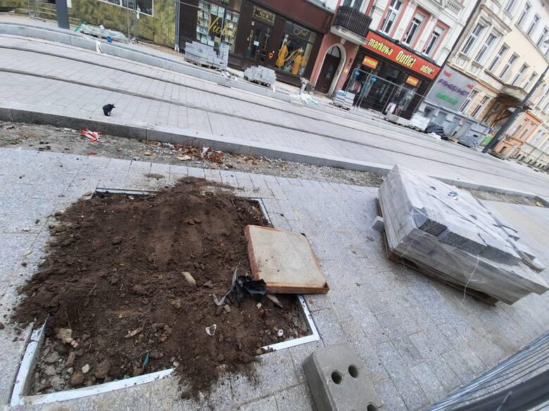 Drzewa mają zostać posadzone między ul. Łokietka a 30 Stycznia.