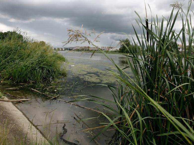 Eksperci szacują, że na pięciokilometrowym odcinku rzeki do wydobycia jest ponad 680 tys. metrów sześciennych mułu.