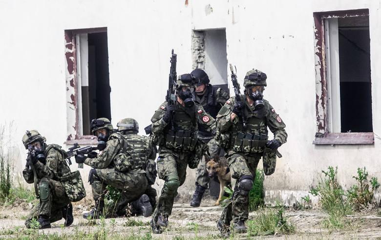 W ćwiczeniach wzięli udział: Bieszczadzki Oddział Straży Granicznej, 21 Brygada Strzelców Podhalańskich, Policja, Państwowa Straż Pożarna, WOPR, GOPR,