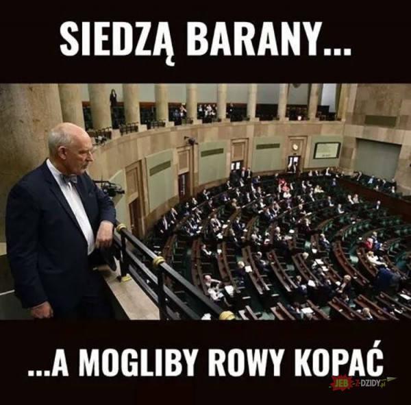 Śpiący Janusz Korwin-Mikke i bezlitośni Internauci. Politycy wrócili na Wiejską: Zobacz najlepsze MEMY