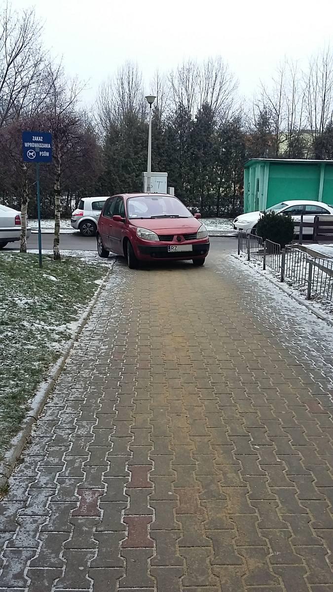 Rzeszów, ul. Pelczara.