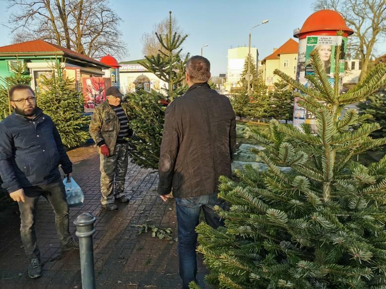 Sprzedaż choinek idzie pełną parą. W Toruniu jest wiele miejsc, w których można zaopatrzyć się w świąteczne drzewka. Sporym powodzeniem cieszy się oferta