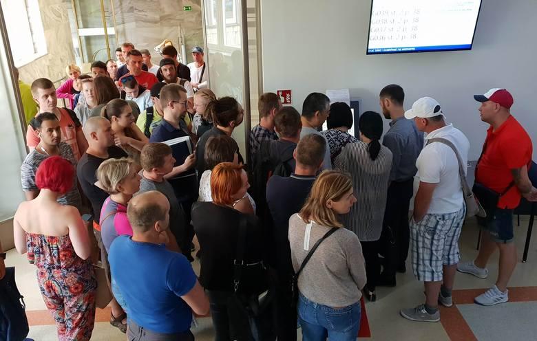 Szturm na Centrum Obsługi Cudzoziemców w Opolu. Tłum Ukraińców każdego ranka walczy o numerki