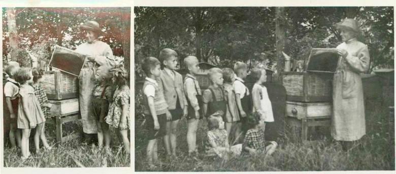 """Lublinianin Stanisław Jasiński w swojej pasiece na Poczekajce,  podczas """"zielonej szkoły"""" dla przedszkolaków, 1955 r."""
