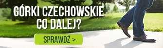 Górki czechowskie