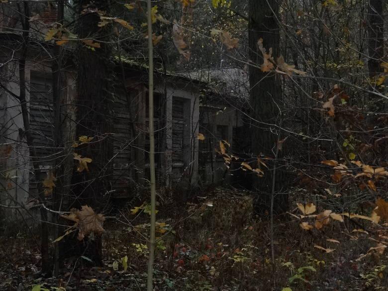 Widok ruin ośrodka przygnębia