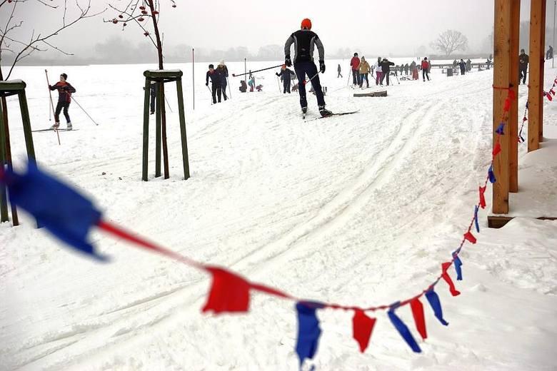 - Amatorzy nart biegowych nie muszą wyjeżdżać za miasto, żeby skorzystać z tej formy aktywności - mówi Eliza Bilewicz-Roszkowska z Departamentu Komunikacji