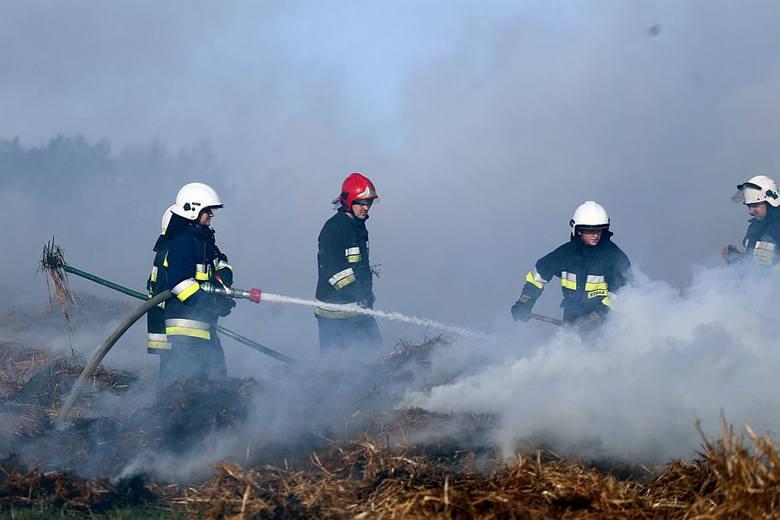 9 kwietnia strażacy walczyli z pożarem balotów słomy w Jarcewie koło Chojnic