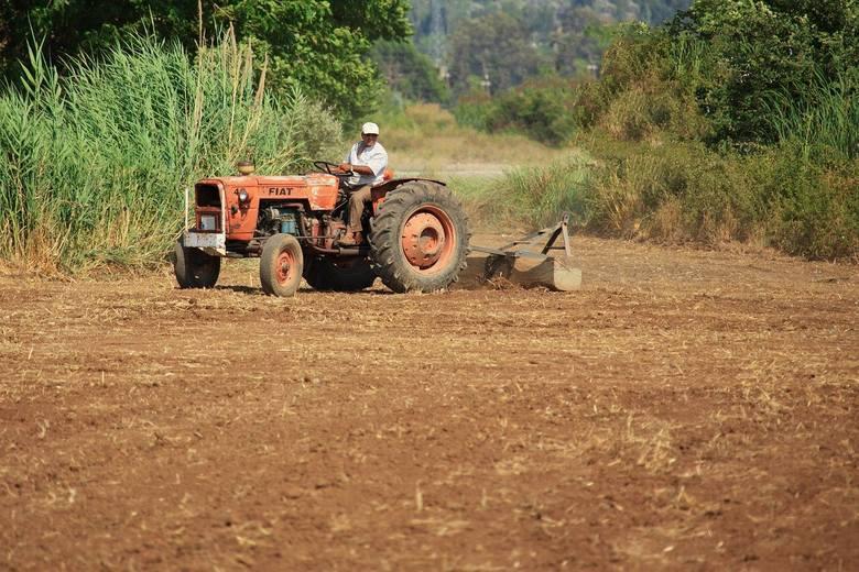 Borelioza jest najczęstszą chorobą zawodową wśród rolników.Zobacz kolejne zdjęcia. Przesuwaj zdjęcia w prawo - naciśnij strzałkę lub przycisk NASTĘP