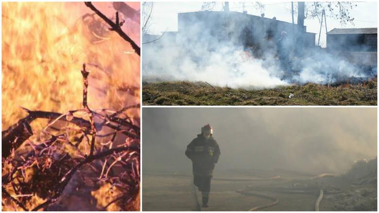 Spłonęło 12 tys. hektarów, zginęło 6 osób. Nie wypalaj traw!