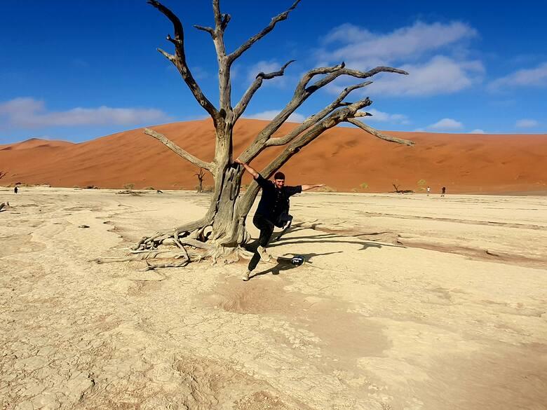 W pozycji drzewa (prawie) na pustyni Namib