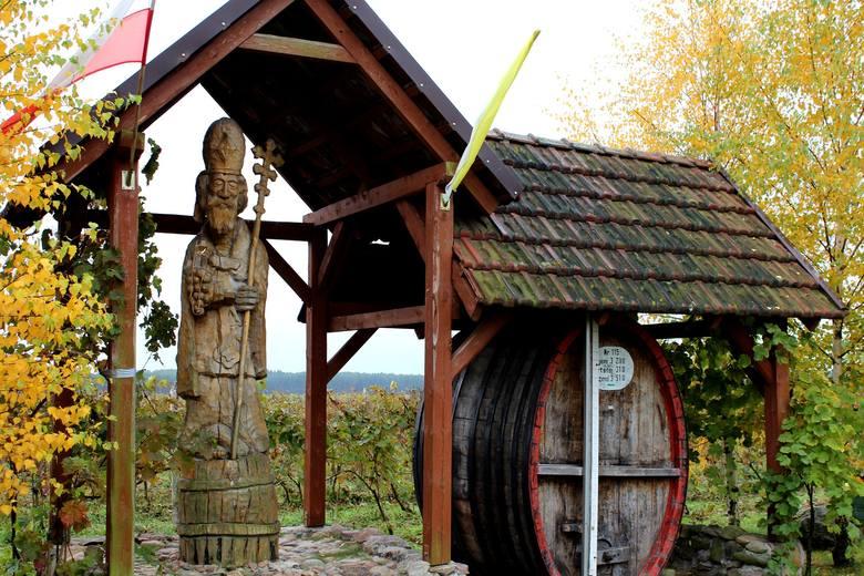 """Winnica """"Cantina"""" należąca do państwa Mariusza i Karoliny Pacholaków działa od 2006 roku. Jej powierzchnia, to ok. 1,3 hektara. Smakosze"""