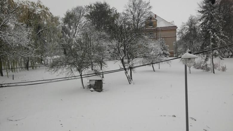 Zdjęcia z Trzyciąża i Wolbromia