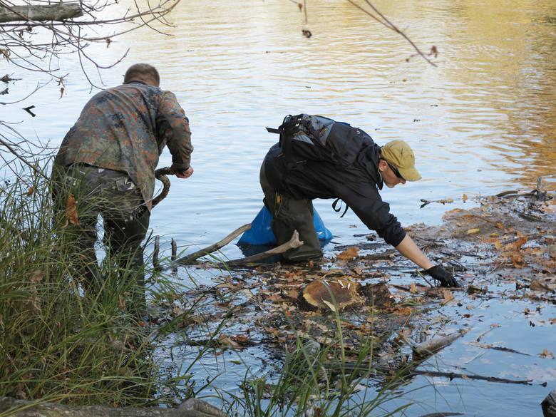 Przez kilka tygodni wędkarze, miłośnicy Warty wyławiali z rzeki martwe ryby