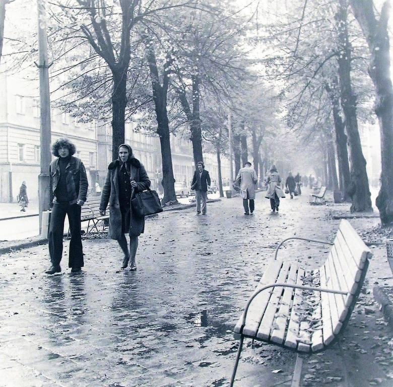 Jak było widać jesienią  1974 r., lipy mocno sypnęły zwiędłym listowiem na deptak al. Wojska Polskiego